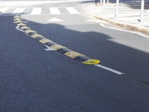 plastic lane divider pic