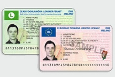Plastic Card License