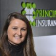 Principal Insurance Ireland extends cover to customs, classic, trikes and high value bikes.